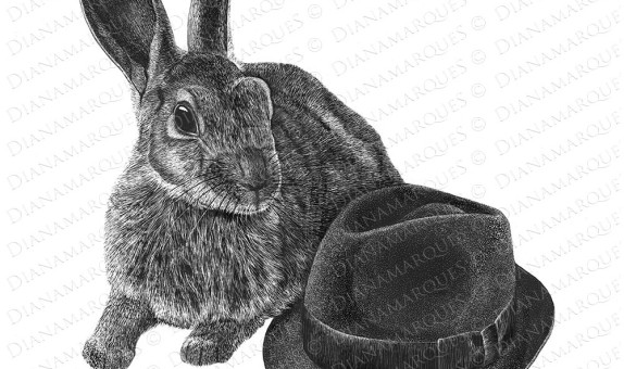 scratchboard illustration of rabbit and hat