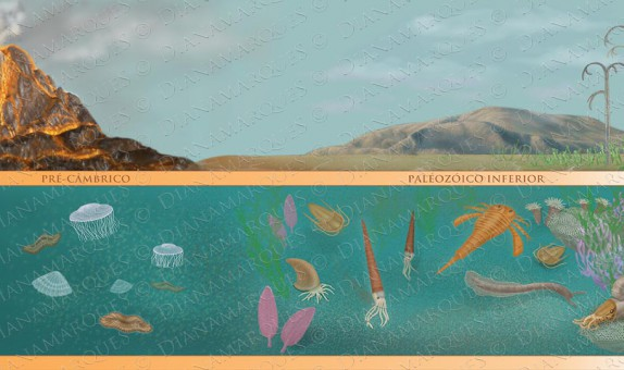 digital textbook illustration representing the evolution of life from the pre cambric through the paleozoic