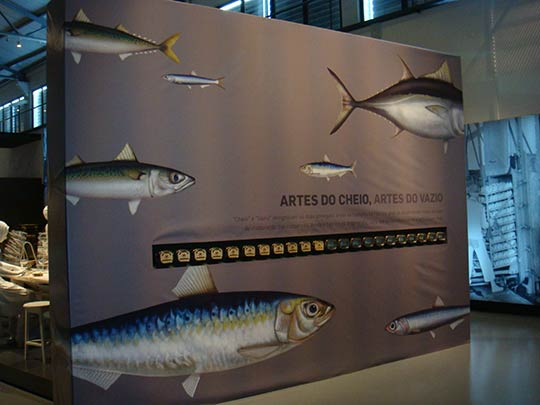 Permanent Exhibition at Museum of Portimão