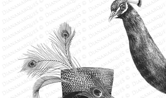 scratchboard illustration of peacock and hat
