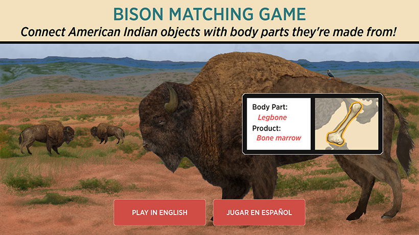 Bison Interactive Game