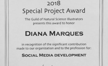 GNSI 2018 Special Project Award certificate