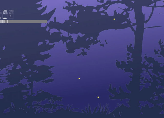 Frame from animation on National Geographic story about the about the fireflies in the Smoky Mountains
